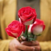 Solea Del Amor Generoso