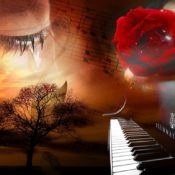 Noche De Amor En Tres Cantos